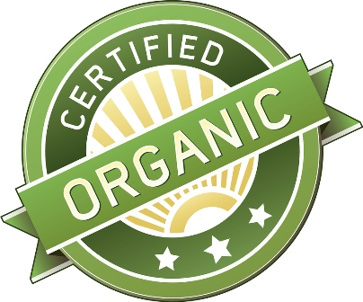 Organic Search Marketing