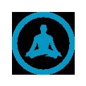 Wellness icon