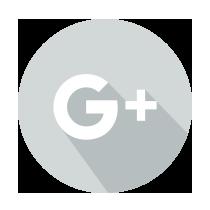 Google +icon
