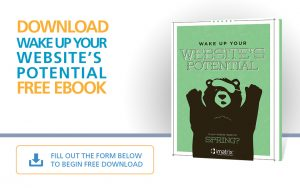 Waking Up Your Website's Potential - E-Book